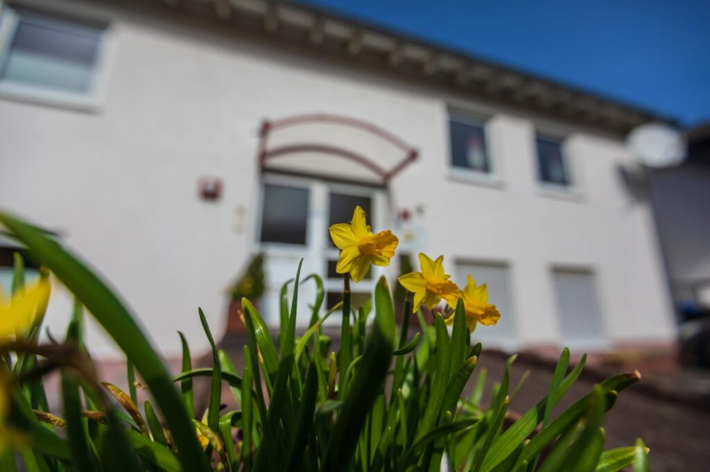 WEB-_0042_Außen Haus Flora5